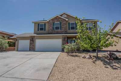 Alamogordo Single Family Home For Sale: 352 Bosque