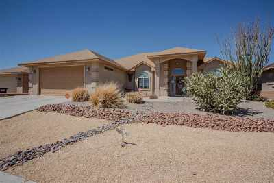 Alamogordo Single Family Home For Sale: 373 Wildwood Dr