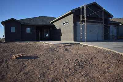 Alamogordo Single Family Home Under Contract: 559 San Simon Drive