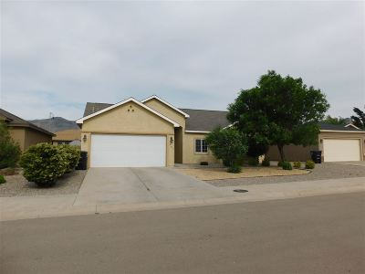 Alamogordo Single Family Home For Sale: 401 Coronado Dr