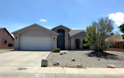 Alamogordo Single Family Home For Sale: 222 Kerry Av