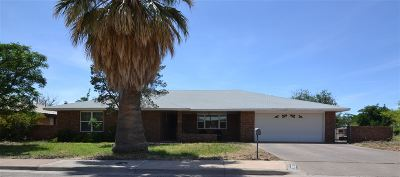 Alamogordo Single Family Home For Sale: 2802 Carmel Dr