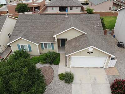 Alamogordo Single Family Home For Sale: 221 Burnage Ln