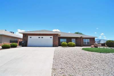 Alamogordo Single Family Home For Sale: 3802 Driftwood Av