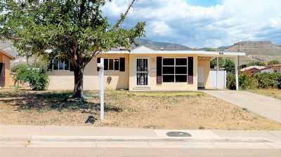 Alamogordo Single Family Home For Sale: 1100 Ridgecrest Dr