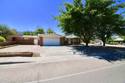 Alamogordo Single Family Home For Sale: 1300 Scenic Dr