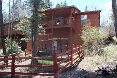 Cloudcroft Single Family Home For Sale: 608 Sugar Pine Dr