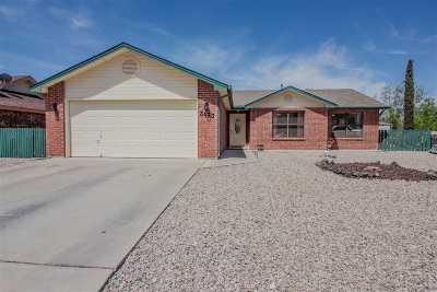 Alamogordo Single Family Home For Sale: 3433 Mesa Verde Pl