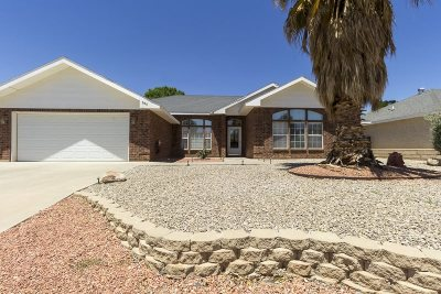 Alamogordo Single Family Home For Sale: 309 Cielo Grande