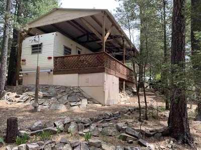 Cloudcroft Single Family Home For Sale: 46 Pine Ridge