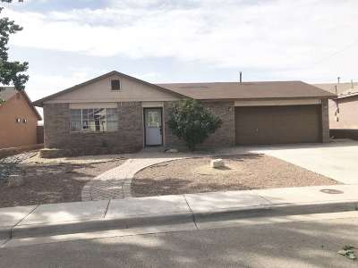 Alamogordo Single Family Home Uc W/Contingency: 601 Venus Av