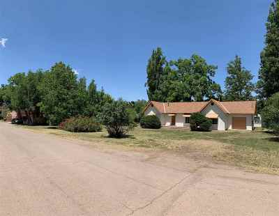 Tularosa Single Family Home For Sale: 902 7th St