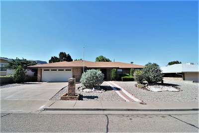 Alamogordo Single Family Home For Sale: 3014 Del Cerro
