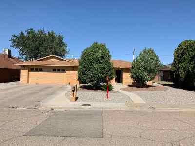 Alamogordo Single Family Home For Sale: 103 Sunrise Av