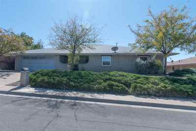 Alamogordo Single Family Home For Sale: 3012 Sunland Dr