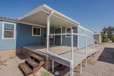 Alamogordo Single Family Home For Sale: 40 Diablo Dr