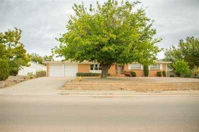 Alamogordo Single Family Home For Sale: 1502 Juniper Dr
