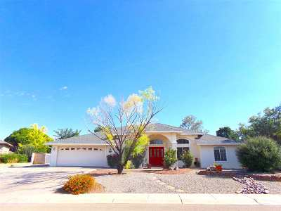Alamogordo NM Single Family Home For Sale: $274,900