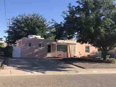 Alamogordo Single Family Home For Sale: 1002 Dexter Ln