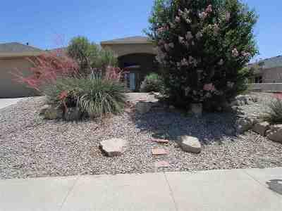Alamogordo Single Family Home For Sale: 424 Casa De Suenos