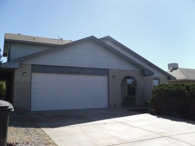 Alamogordo Single Family Home For Sale: 1419 Columbia Av