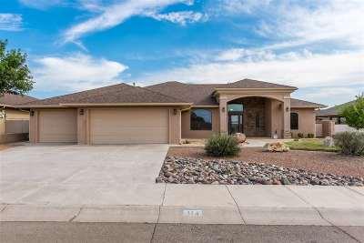 Alamogordo Single Family Home For Sale: 314 Casa De Suenos