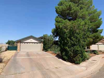 Alamogordo Single Family Home For Sale: 3421 Shenandoah Pl