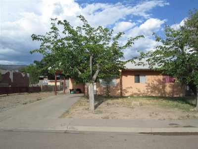 Alamogordo Single Family Home For Sale: 400 Webster Dr