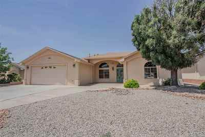 Alamogordo Single Family Home For Sale: 3831 Wood Lp