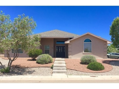 Alamogordo Single Family Home For Sale: 353 Camino Real
