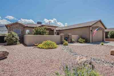 Alamogordo Single Family Home For Sale: 1215 Santiago St