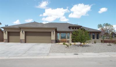 Alamogordo Single Family Home For Sale: 355 Palo Duro