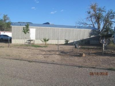 Alamogordo Single Family Home For Sale: 1704 Palo Verde Dr
