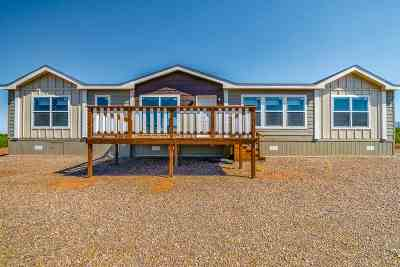 Alamogordo Single Family Home For Sale: 28 Mira Vista Lp