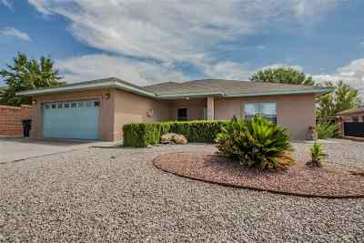 Alamogordo Single Family Home For Sale: 3810 Wood Lp