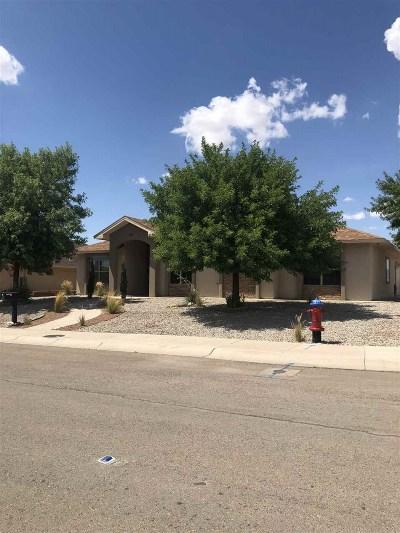 Alamogordo Single Family Home For Sale: 587 Tierra Bella Drive