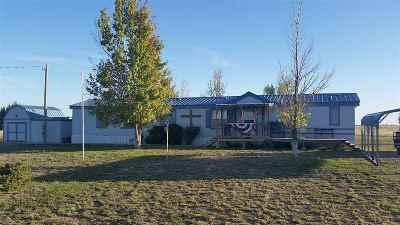 Dexter Single Family Home For Sale: 104 Lansing Road