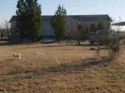 Dexter Single Family Home For Sale: 6553 Eagles Nest Rd.