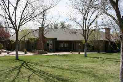 Roswell Single Family Home For Sale: 2016 Brazos