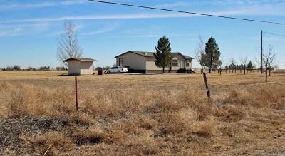 Dexter Single Family Home For Sale: 6577 Vineyard Rd
