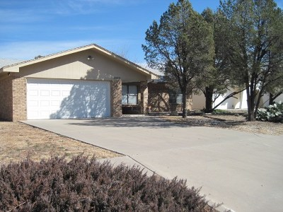Single Family Home For Sale: 3503 Mission Arch Dr.