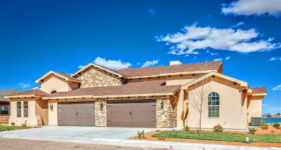Roswell NM Single Family Home For Sale: $216,000