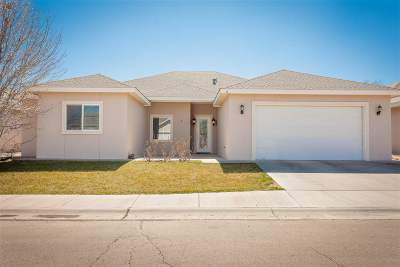 Roswell NM Single Family Home For Sale: $235,000