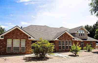 Roswell Single Family Home For Sale: 1500 E 17th St.