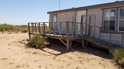 Dexter Single Family Home For Sale: 843 Merlinda Rd
