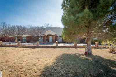 Roswell Single Family Home For Sale: 2000 W Mescalero Rd