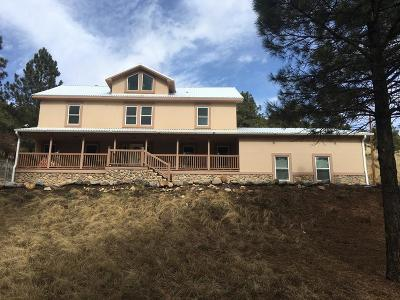 Single Family Home For Sale: 110 Tennis Court