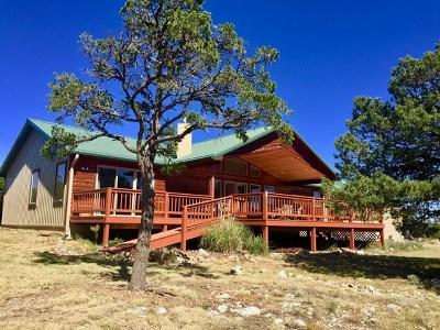 Single Family Home For Sale: 176 Este
