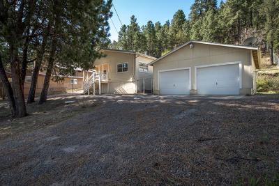 Single Family Home For Sale: 235 Junction Rd