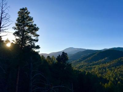 Ruidoso NM Residential Lots & Land For Sale: $275,000